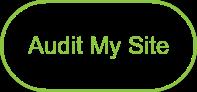Audit My Site