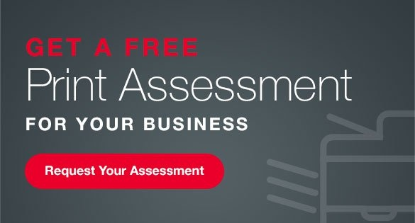 print assessment for business