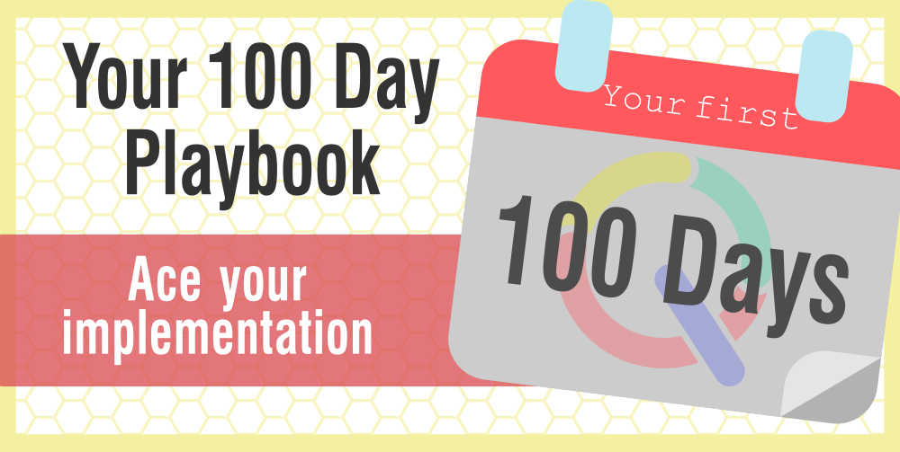 100 day playbook customer success