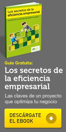 Guía gratuita: los secretos de la eficiencia empresarial