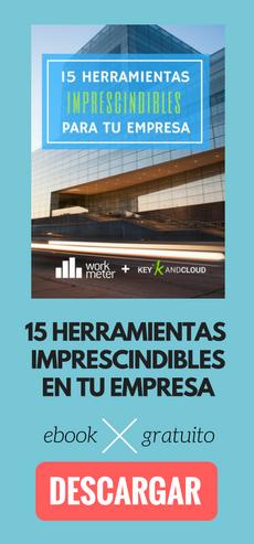 15 Herramientas Imprescindibles en tu empresa - Ebook