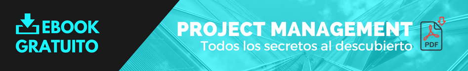 Descargar Project Management Ebook