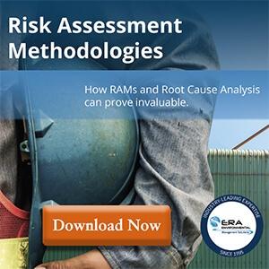 risk management guide download