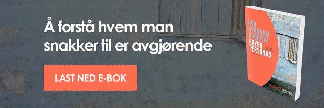 E-bok Buyer Persona