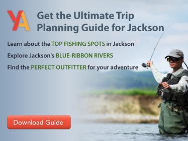 Jackson-Trip-Guide