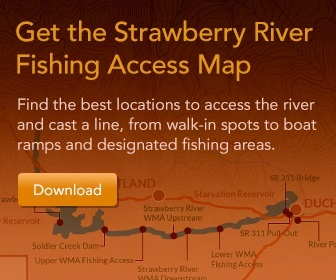 Strawberry-River-Access
