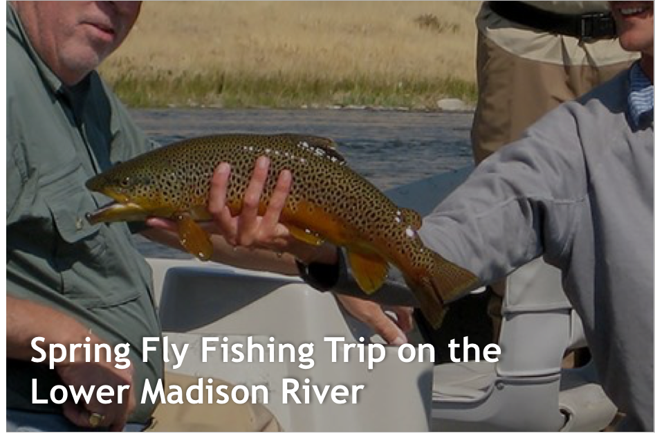 Lower-Madison-Trip
