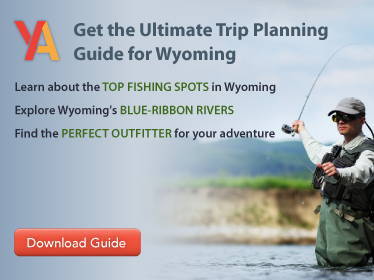 Wyoming-Trip-Guide