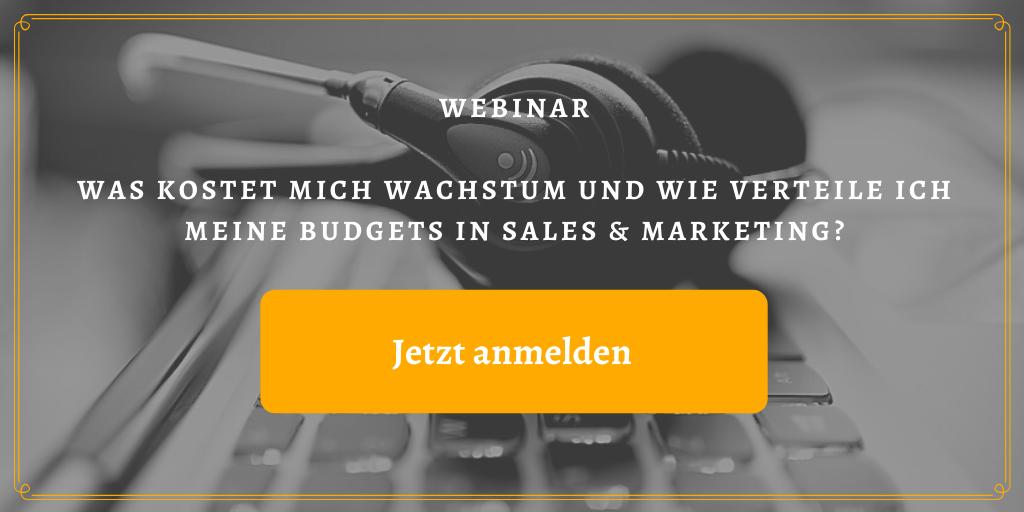 Webinar: Was kostet mich Wachstum und wie verteile ich meine Budgets in Sales & Marketing?