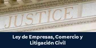 Ley de Empresas, Comercio y Litigación Civil