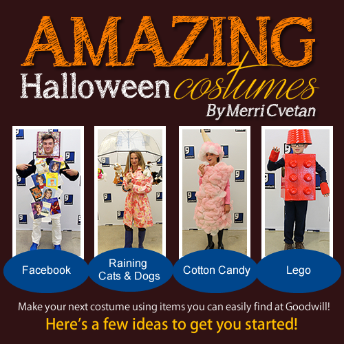 Amazing Halloween Costumes by Merri Cvetan