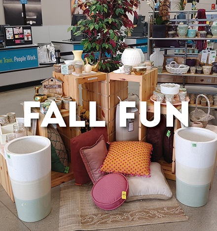 Living Amazing - Fall 2019 - Fall Fun