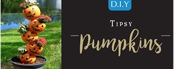 Halloween DIY - Tipsy Pumpkins