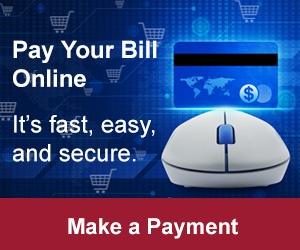 Pay your RFgen invoice securely online