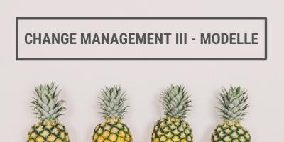 Change Management Modelle