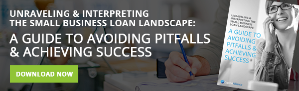unraveling_and_interpreting_the_small_business_loan_landscape
