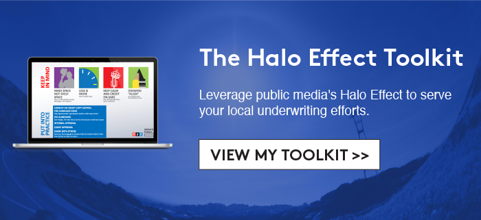 Offer: The Halo Effect Toolkit