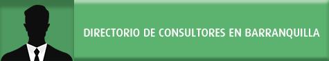 Directorio de Consultores Amrop Top Management en Región Caribe