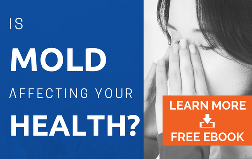 is-mold-affecting-your-health
