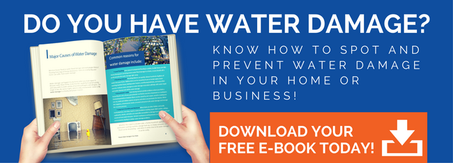 Water Damage Free Ebook Download