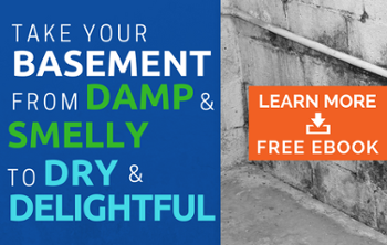 Damp and Smelly Basement - Basement Waterproofing solutions