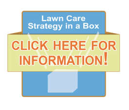 lawn care strategy in a box