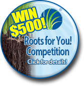 Turf roots competition