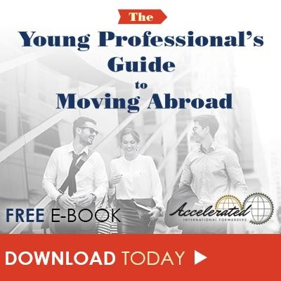 Free_eBook_The_Young_Professionals_Guide_to_Moving_Abroad