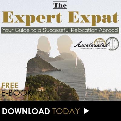 The Expert Expat - Your Guide to a Successful International Relocation