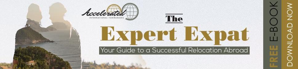 The Expert Expat - Your Guide to a Successful Relocation Abroad eBook