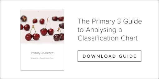 The Pri 3 Guide To Analysing A Classification Chart