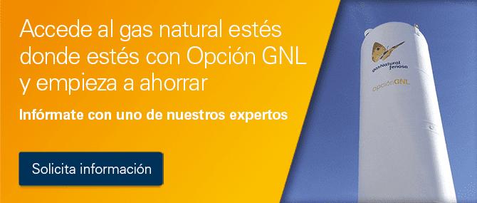 Opción GNL