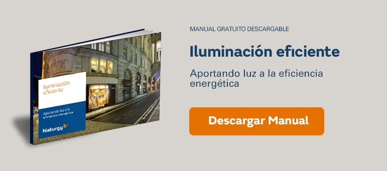 Manual gratuito Iluminación eficiente