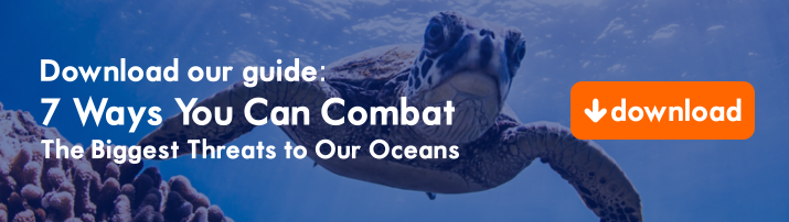 Ocean health guide