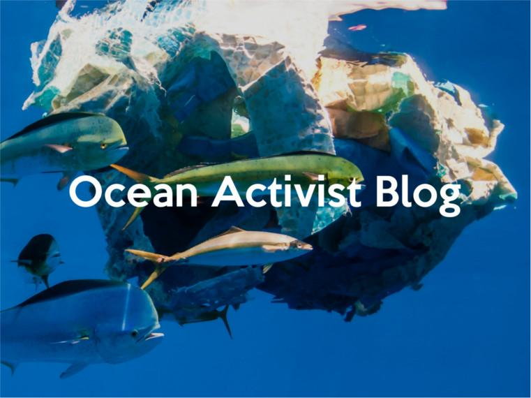 PuraKai ocean activist blog