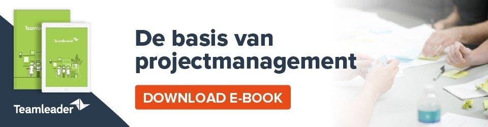 Van elk project een succes maken? Download je gratis e-book: de basis van projectmanagement.