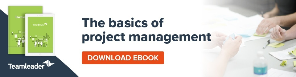 The basics of project management - download ebook