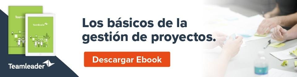 Convertie cada proyecto en un éxito. E-book: los básicos de la gestión de proyectos. Descargar E-book.