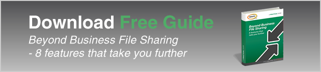 download-free-guide-beyond-business-file-sharing