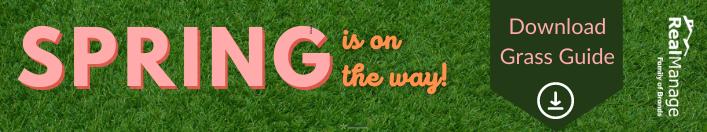 Grass Guide PDF