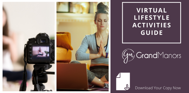 Virtual Lifestyle Activities Guide