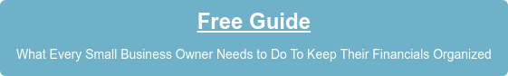Free Guide What Every Small Business Owner Needs to Do To Keep Their Financials Organized