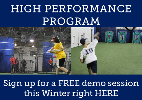 free baseball training session