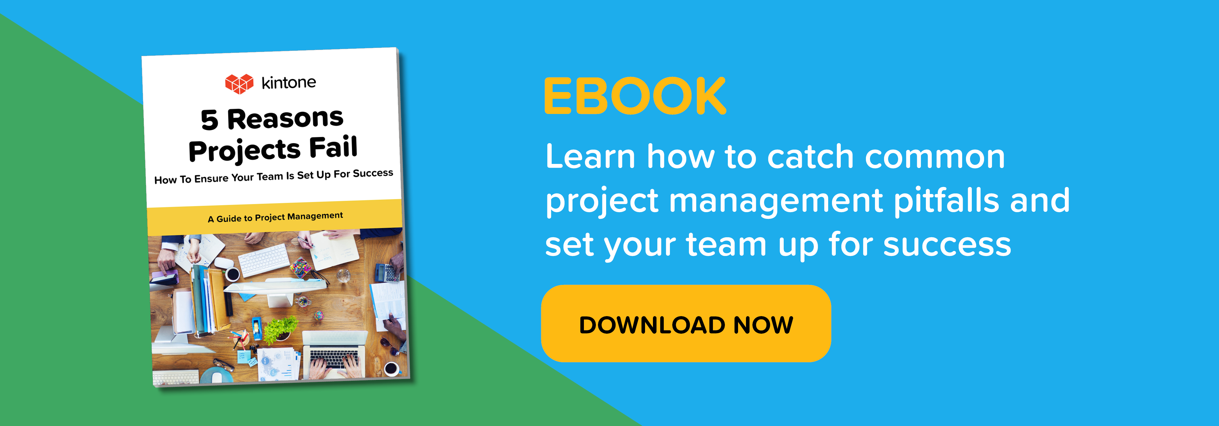 5 Reasons Projects Fail eBook Download