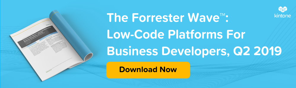 forrester-low-code-platform-for-business-developer-2019