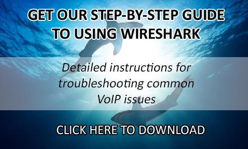 Free downloadable guide to using Wireshark (click here)