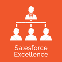 Salesforce Excellence