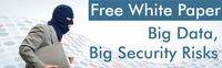 Free White Paper - Big Data, Big Security Risks
