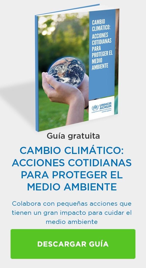 Cambio climático acciones cotidianas