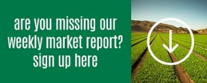 Veg-Fresh Farms Produce Market Report